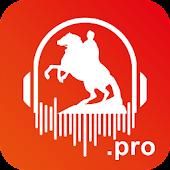 Аудиогид по мнению Санкт-Петербургу! 000 Аудиогидов!