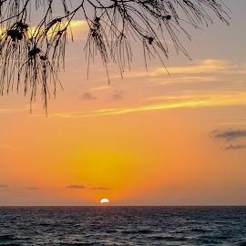 Sunrise on the beach by Taz Graham - Novices Only Landscapes ( beach, sunrise )