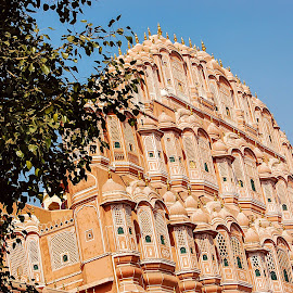 Hawa Mahal Palace by Prasanta Das - Buildings & Architecture Architectural Detail ( pink, palace, heritage )
