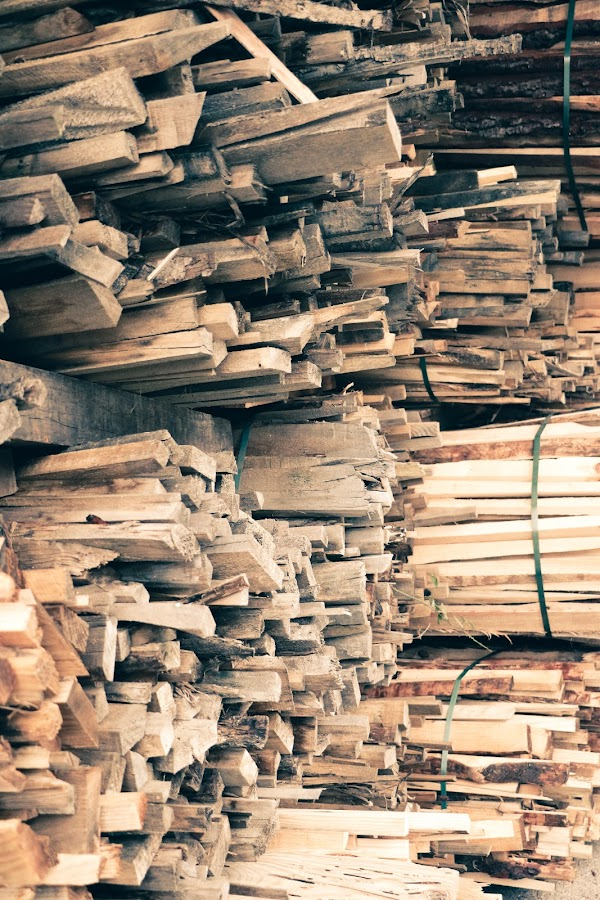 Wood by João Pedro Ferreira Simões - Novices Only Objects & Still Life ( wood, burningwood, firewood )