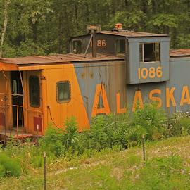 Abandoned Cabose by Ron Olivier - Transportation Trains ( abandoned cabose,  )
