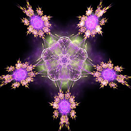 5 points of flowers by Nancy Bowen - Illustration Abstract & Patterns ( black background, abstract art, purple flowers, flowers, fractal )