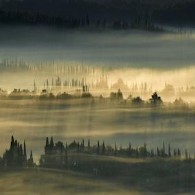 Fog in Konavle, Dubrovnik by Miho Kulušić - Landscapes Mountains & Hills ( foggy, sunrise, cypresses, hills, konavle, fog, morning,  )
