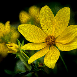 Yellow and Green by Greg Bennett - Digital Art Things ( carlyle lake, green, il, yellow, flowers, spring, oil painting, flower )