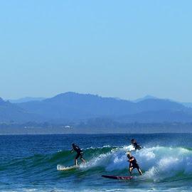 by Robyn Downie - Sports & Fitness Surfing ( surfing, byron bay, ocean, beach, surf )
