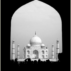The Taj Mahal  by Siddharth Arya - Buildings & Architecture Public & Historical