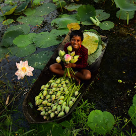 Cultivation of Lotus by SURIT DATTA - People Portraits of Men ( lotus, cultivation, child )