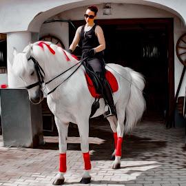 Companions by Fotósok és Fotómodellek F.Tom - Sports & Fitness Other Sports ( hungary, girl, ftom, horseman, horse,  )