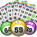Game Bingo apk for kindle fire