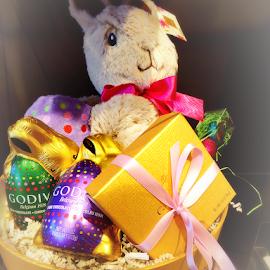 Godiva Easter Bunny Basket by Cheryl Beaudoin - Public Holidays Easter ( stuffed animals, godiva, chocolate, easter, bunny, basket )