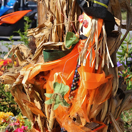 Scarecrow by Terry Linton - Public Holidays Halloween