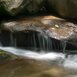 JG-2015-2241 by Ross Boyd - Landscapes Waterscapes ( water, mountains, state park, sc, creeks, streams )