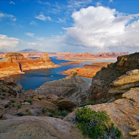 Lake Powell from Alstrom Point by Dale Kesel - Landscapes Cloud Formations ( water, orange, lake powell, photograph, alstrom point, waterscape, art, white, lakes, canvas, cloudscape, lake, landscape, reservoir, red, utah, blue, buttes, arizona, sundown, southwest, land formations, landscape photography, prints, rain cloud,  )