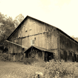 by Sandy Fetter - Buildings & Architecture Decaying & Abandoned