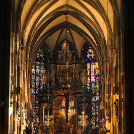 St. Stephen's Cathedral  by Andreas  Agung - Buildings & Architecture Places of Worship