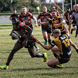 LRU 64 by Michael Moore - Sports & Fitness Rugby