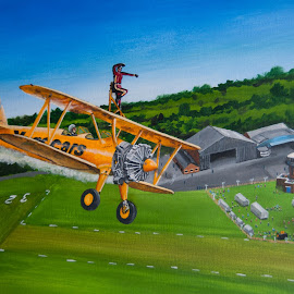 wing walker by Paul James - Painting All Painting