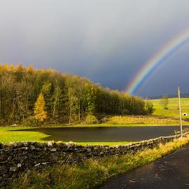 The Rainbow by David Rowden - Landscapes Prairies, Meadows & Fields ( summer, trees, lake, landscape, pond, rainbow )
