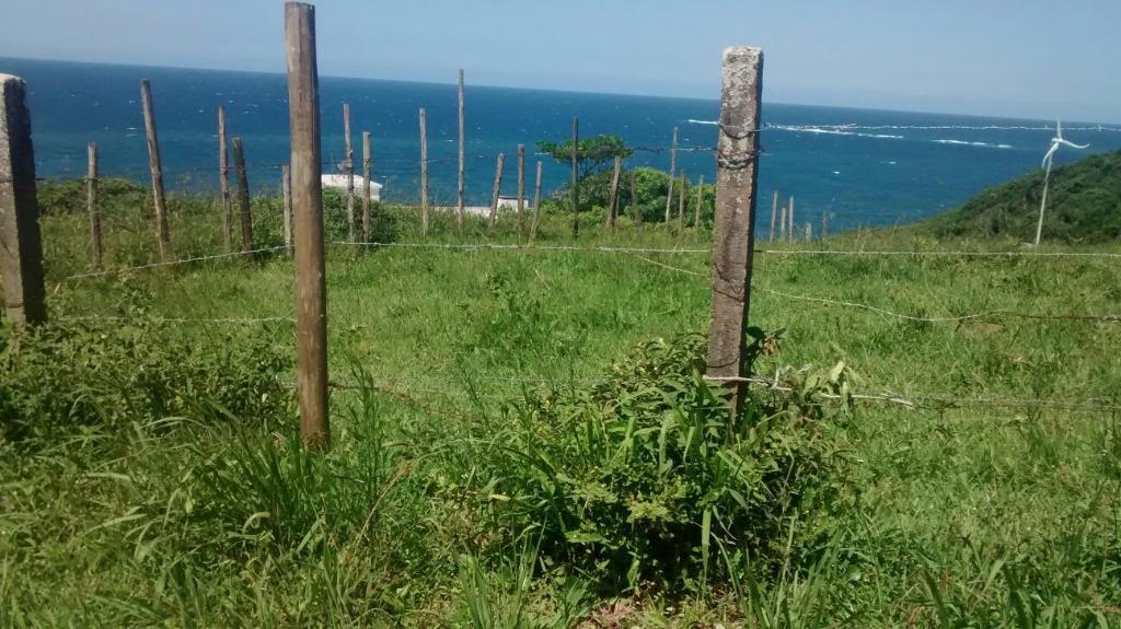 Terreno, Grama, Garopaba (TE0268) - Foto 5