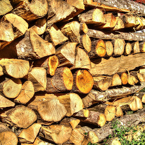 Ready for long winter by Oliver Švob - Instagram & Mobile Android ( forests, detail, 2013, wood, 2014, logs, win, new, fresh, lumber, quality, heating, snapshot by malioli, save the forests worldwide, firewood, closeup, pwc,  )