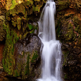 Waterfall by Mladjan Pajkic - Landscapes Waterscapes ( water, nature, waterscape, waterfall, forest )