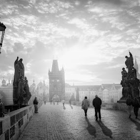 Charles Bridge by Petar Lupic - City,  Street & Park  Street Scenes