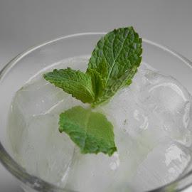 Mint by Łukasz Pokiński - Food & Drink Ingredients