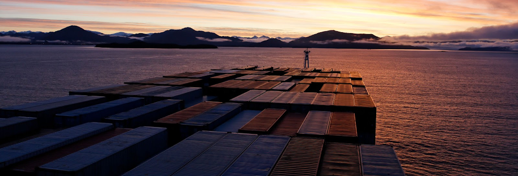 Container Ship Risk Management