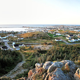 The Town Of Bonavista Newfoundland by Harold Bradley - Buildings & Architecture Homes ( isolated, home, houses, colorful, beautiful, land, house, attract, attraction, hiking, history, inspiring, climbing, color, dramatic, historical, homes, hike )