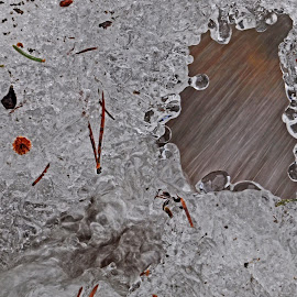 Flow under the ice by Marko Ginsberg - Nature Up Close Water ( water, stream, ice, flow,  )