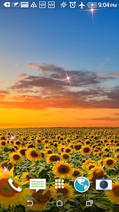 Beatiful Sunflowers Wallpapers - screenshot