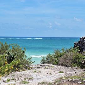 Tulum by Victoria Fenton - Landscapes Beaches ( cancun, mexico, landscape photography, beach, landscape, tulum,  )