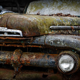 by Tom Baker - Transportation Automobiles ( 2013 )