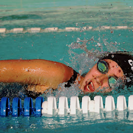 by Harry  Phillips - Sports & Fitness Swimming
