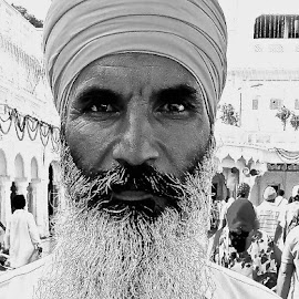 SIKH MAN # 22 by Doug Hilson - People Portraits of Men ( golden temple, imposing look, sikh, turban, beard, india, deep set eyes, portrait, man,  )