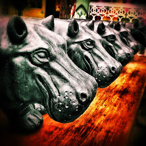Hippos in a row by Geary LeBell - Instagram & Mobile iPhone ( hippo, statue, hippopotamus, wildlife, animal )