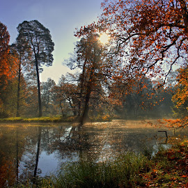 Autumn by Petr Homola - Uncategorized All Uncategorized