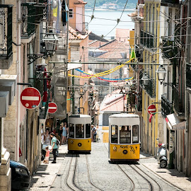 Yellow tram in Lisbon by Natalia Dobrescu - City,  Street & Park  Street Scenes ( ride, explore, europe, canon70d, street, discover, tram, lisbon, yellow, architecture, panorama, photography, city, street photography, vista, historical, portugal )