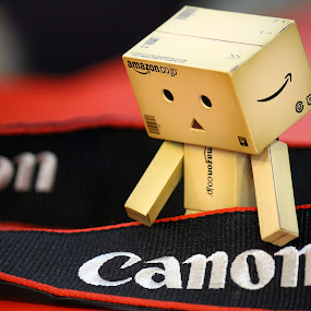 Mr Danbo by Mohd Norsabree Sailan - Products & Objects Business Objects ( canon, newbie, danbo, object, cute, mrdanbo, photo )