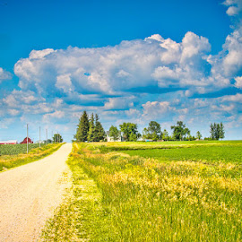The Road Home by Shari Brase-Smith - Landscapes Prairies, Meadows & Fields ( farm, peaceful, blue sky, serene, green, landscape, fields )