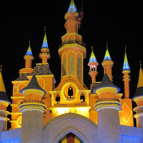 Disney Alike by Shambhunath Sadhu - Artistic Objects Other Objects ( lights, building, 2012, architecture, darkness )