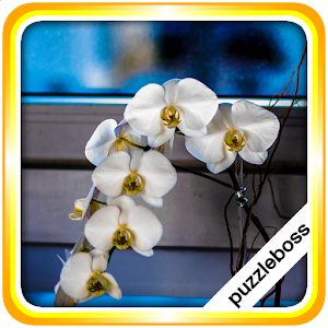 Cover art Jigsaw Puzzles: Orchid Flowers