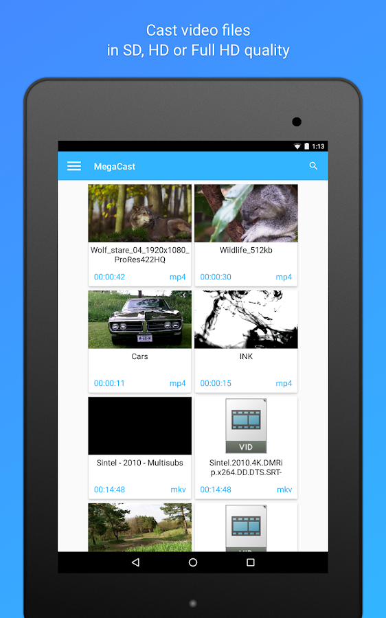 MegaCast - Chromecast player Screenshot 10