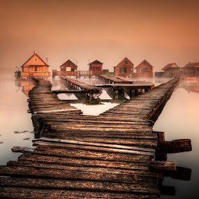 Orly morning on the lake by Cvetka Zavernik - Buildings & Architecture Bridges & Suspended Structures ( morning mist, wooden bridges, lake, morning, bridges,  )
