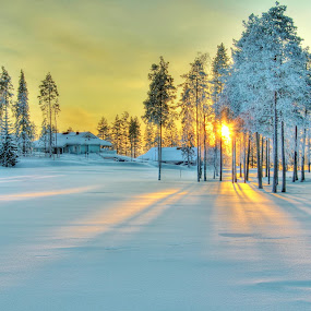 Welcome to Vuokatti in Finland by Simon Lambert - Landscapes Travel ( winter, sunset, vuokatti, snow, finland, pine trees )