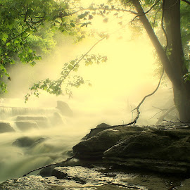 DREAMSCAPE by Dana Johnson - Landscapes Waterscapes ( fog, waterscape, sunrise, landscape, river )