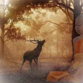 peace by Kathleen Devai - Typography Captioned Photos ( buddhism, life, nature, trees, deer )