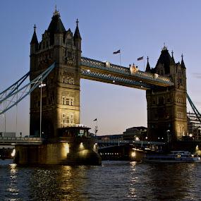 Tower Bridge Evening by Bryan Lowcay - City,  Street & Park  Night (  )