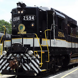 by Brian Baggett - Transportation Trains (  )