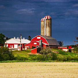 Barn and Silos by Richard Michael Lingo - Buildings & Architecture Other Exteriors ( farm, barn, buildings, architecture, silo )